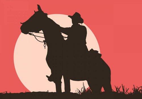 Il Western
